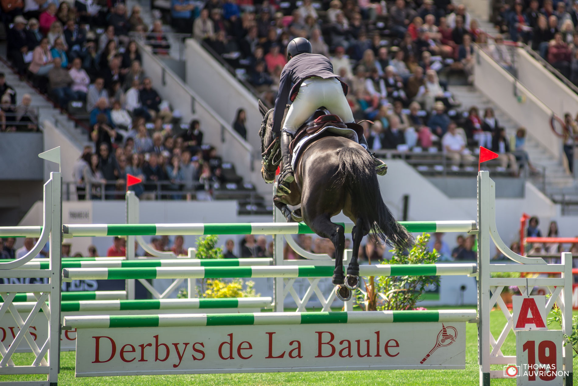 Jumping International La Baule George Emeric Atomic Bomn
