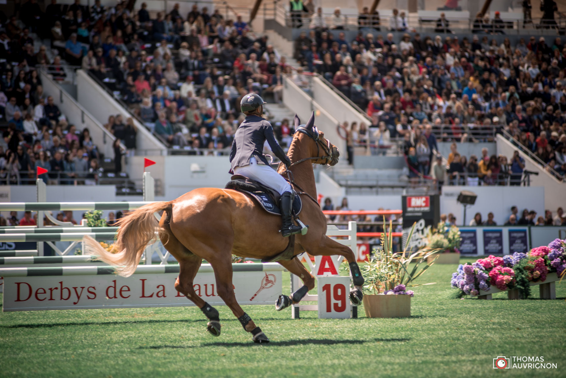 Jumping International La Baule Olivier Robert Atoll de Marigny